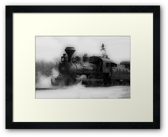 Steam Engine #3 - Prairie Dog Central Railway by Vickie Emms