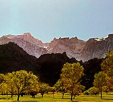 Spring Mt Whitney by Larry Darnell