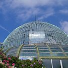 Royal Greenhouse by KZBlog