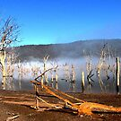 Lake Eildon by Emma  Pettis