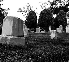 Gravestones & Three Trees by G. Patrick Colvin