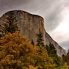 El Capitan Yosemite Fall Colors by photosbyflood