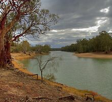 On the Banks of the Murray by Vickie Burt