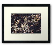 The Leaf Falls Framed Print
