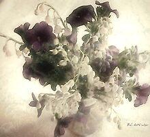 Cream Dream by RC deWinter