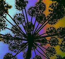 Angelica on Acid by IanHuxtable