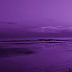 Sunset in Purple by Sandy Keeton