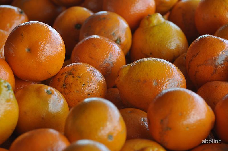 Oranges by abelinc