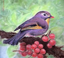 bird by sneha
