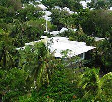 The Hemingway Home, Key West, USA by AmelieatMacao