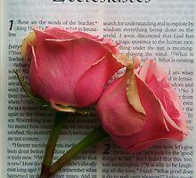 Ecclesiastes by Jeff  Wilson