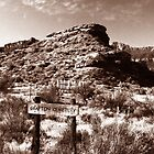Grafton Cemetery Utah by David Lee Thompson