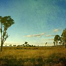 Australiana II by Kitsmumma
