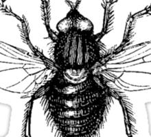 Fly Boy living Large Sticker