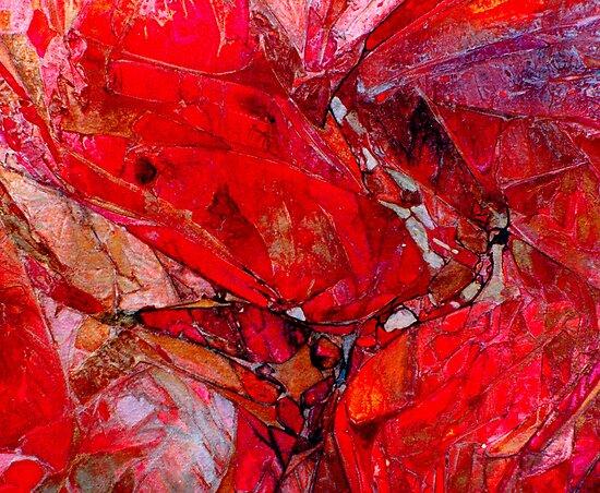 Ruby Rocks by Dana Roper