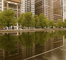 REFLECTIVE CHICAGO  by Scott  d'Almeida