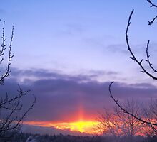 Winter Evening by copperhead