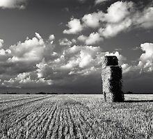 Haystack 2 by Paul Davey