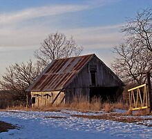 Rusty old barn In Iowa, Indianola Area by Linda Miller Gesualdo