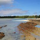 Desroches Atoll, Seychelles by Gina Ruttle  (Whalegeek)
