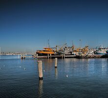 Fremantle fishing fleet. by Adrian Kent