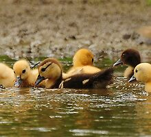 The babies of the lake by Lover1969