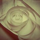 paper rose by Shannon Holm