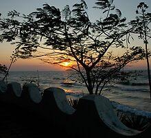 Lake Malawi by DUNCAN DAVIE
