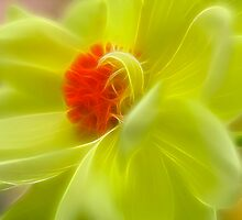 Dahlia In Yellow by Deborah  Benoit