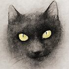 THE BLACK CAT by Leny L.