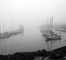 Moored In Mist by Ian Marshall