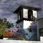 Wisteria on Stucco by Wayne King