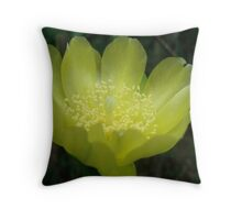 Prickly Pear Blossom Throw Pillow
