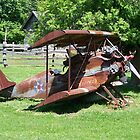 Lowell Davis Plane by RainWolf