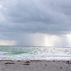 Beach Storm by RainWolf