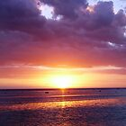 Fijian Sunset by dozzam