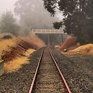 Railway Line, Bridgetown, Western Australia by Elaine Teague