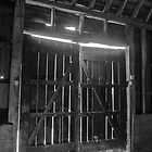 Barn doors by woolleyfir