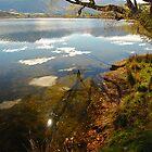 Lake Hayes by Wayne England