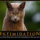 Intimidation by Sharon Morris