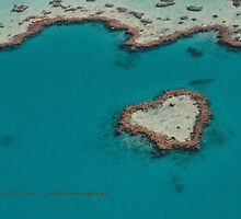 Heart Reef © Vicki Ferrari by Vicki Ferrari