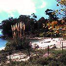 Dutchies beach by georgieboy98