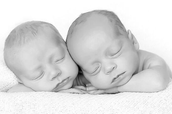 Twins... the fraternal kind ;-) by Kristen  Caldwell