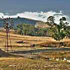 Windmill Dam Cootamundra by KellyJo