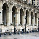 Parisian Precision by Carol Ferbrache