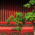Temple of Literature, Hanoi by AnnieD