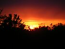 First Sunset Image after the Storm.  by barnsis