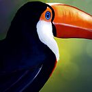 Toucan by Lisa Furze