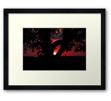 Backyard Sunset Framed Print