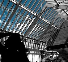 Glasgow - Burrell Collection by Gordon Hunt